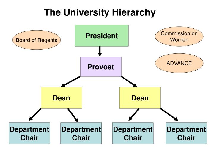 The University Hierarchy