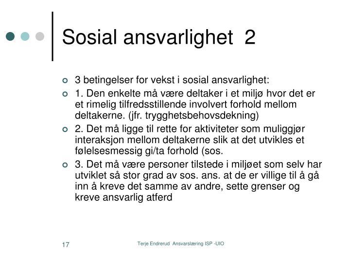 Sosial ansvarlighet  2