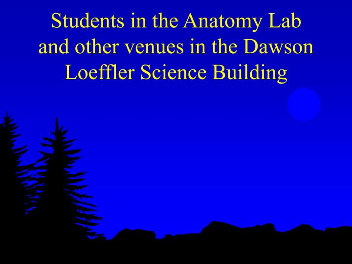 Students in the Anatomy Lab