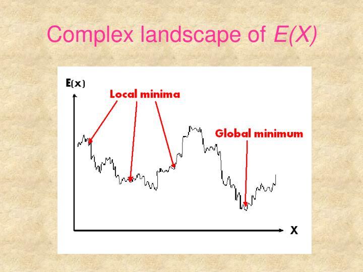 Complex landscape of e x
