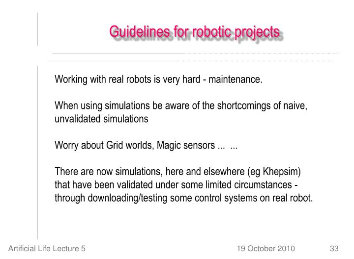 Guidelines for robotic projects