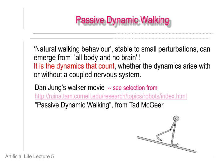 'Natural walking behaviour', stable to small perturbations, can emerge from  'all body and no brain' !