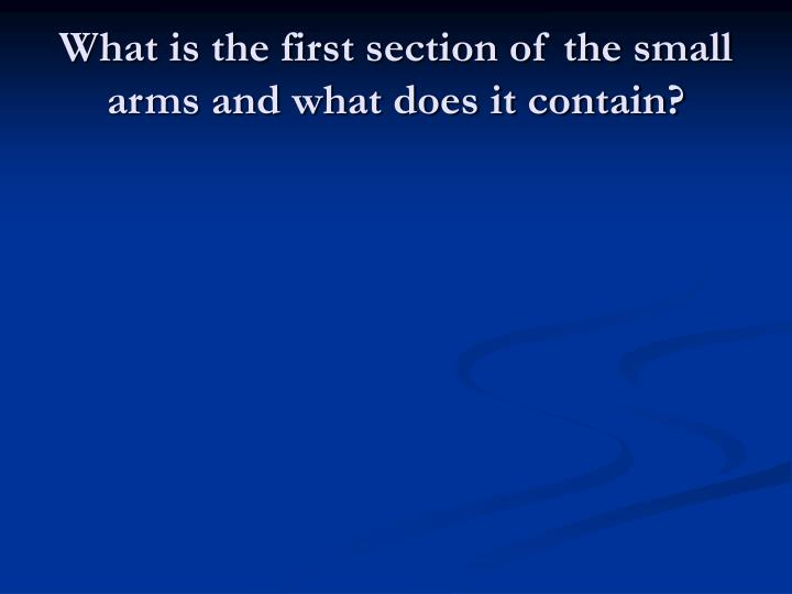 What is the first section of the small arms and what does it contain?