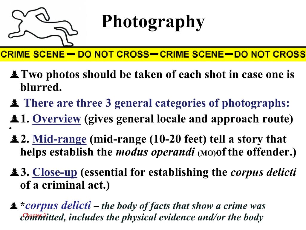 PPT - THE CRIME SCENE PowerPoint Presentation - ID:4047902