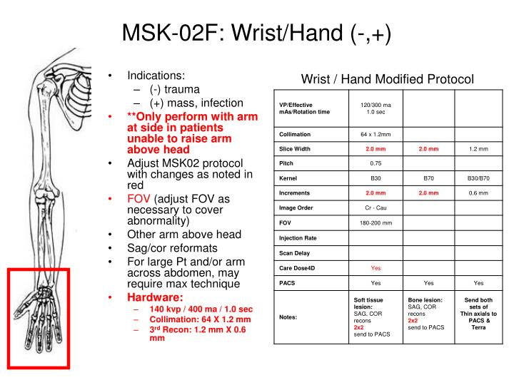MSK-02F: Wrist/Hand (-,+)
