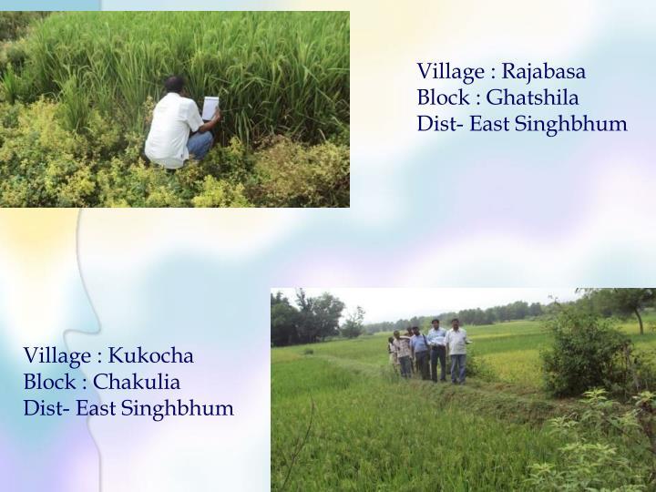 Village : Rajabasa