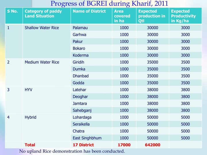 Progress of BGREI during