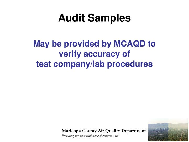 Audit Samples