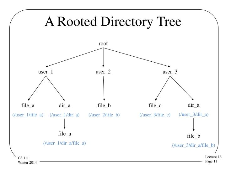 A Rooted Directory Tree