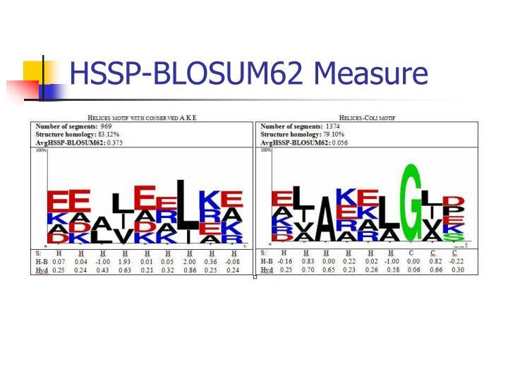 HSSP-BLOSUM62 Measure