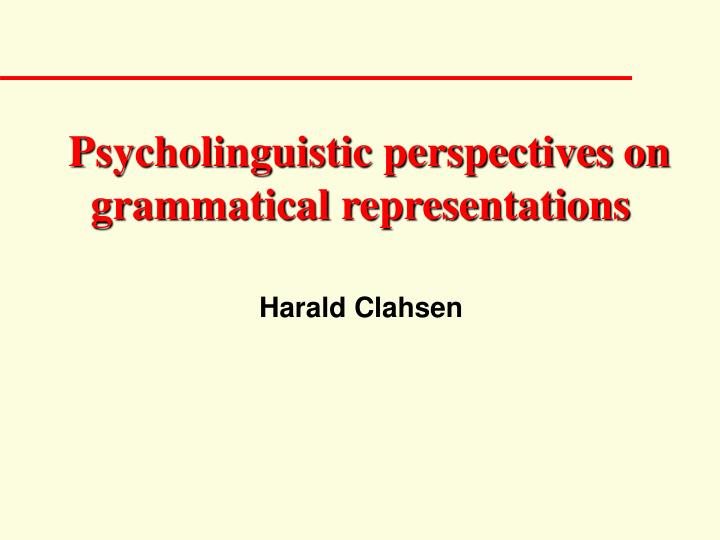 psycholinguistic perspectives on grammatical representations n.