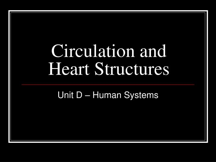 circulation and heart structures n.