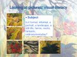 looking at pictures visual literacy