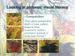 looking at pictures visual literacy2