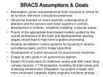 bracs assumptions goals