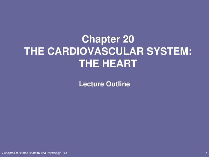 PPT - Chapter 20 THE CARDIOVASCULAR SYSTEM: THE HEART