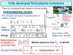 fully developed fluid plasma turbulence