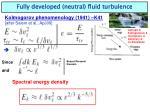 fully developed neutral fluid turbulence