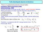 fully developed plasma turbulence