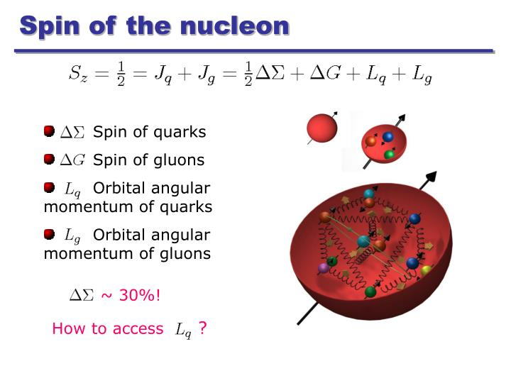 Spin of the nucleon
