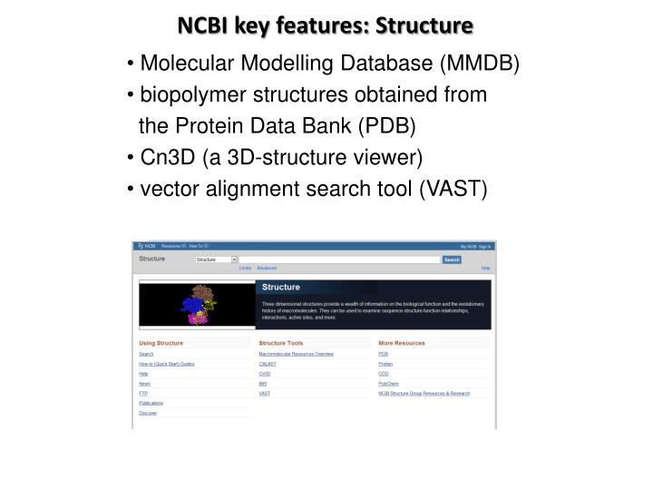 NCBI key features: Structure