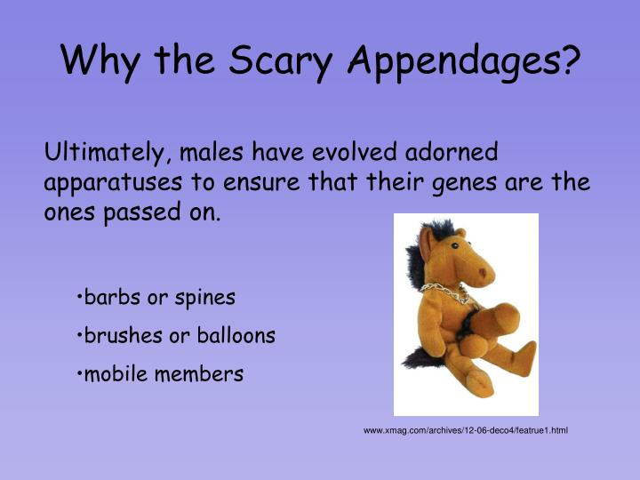 Why the Scary Appendages?