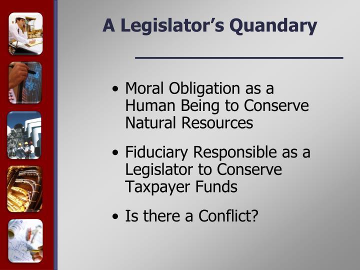 A Legislator's Quandary
