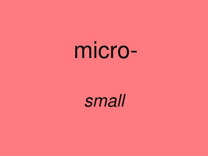 micro-