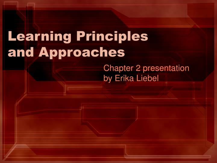 learning principles and approaches n.
