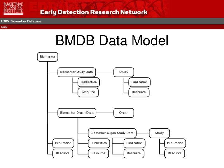 BMDB Data Model