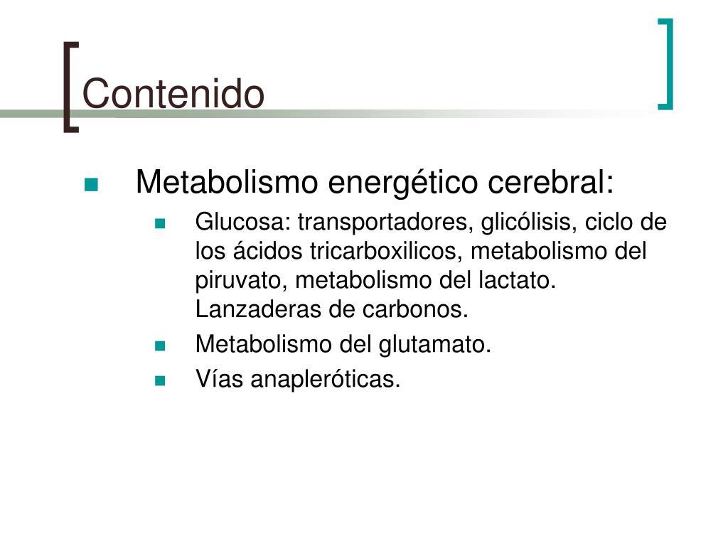 El mundo más inusual del mundo Cómo aumentar el metabolismo