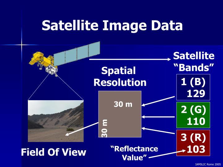 Satellite Image Data