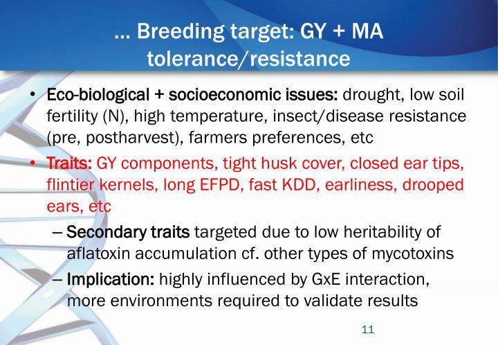 … Breeding target: GY + MA tolerance/resistance