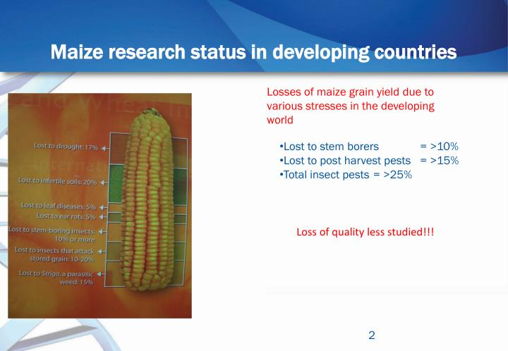 Maize research status in developing countries