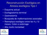 reconstrucci n esof gica en atresia esof gica tipo i2