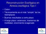reconstrucci n esof gica en atresia esof gica tipo i6