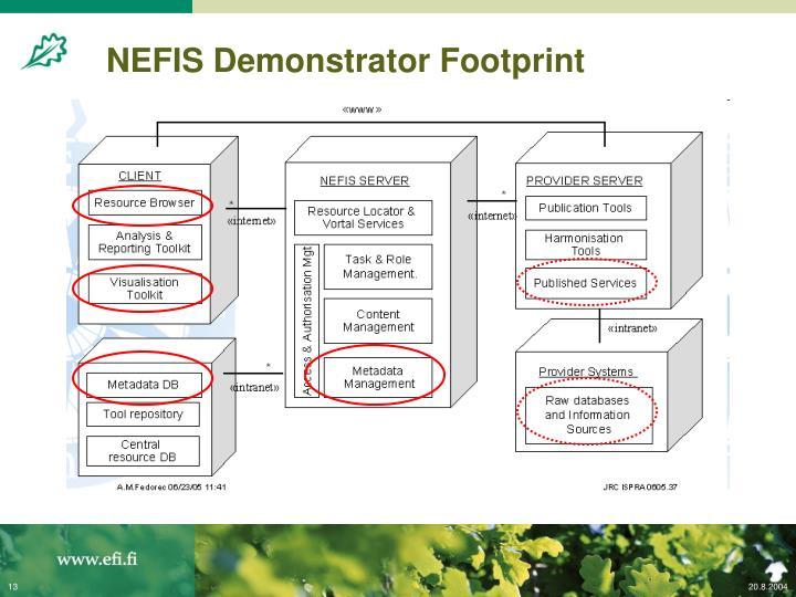 NEFIS Demonstrator Footprint