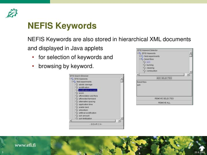NEFIS Keywords