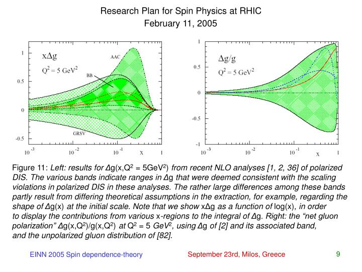 Research Plan for Spin Physics at RHIC