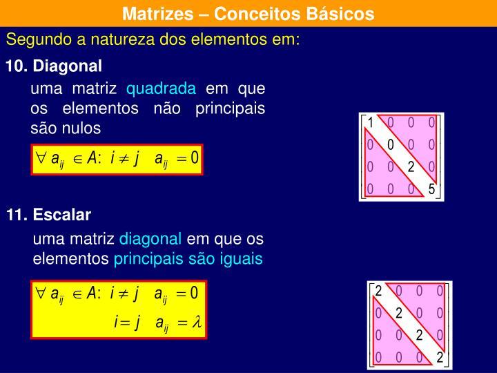 Matrizes – Conceitos Básicos