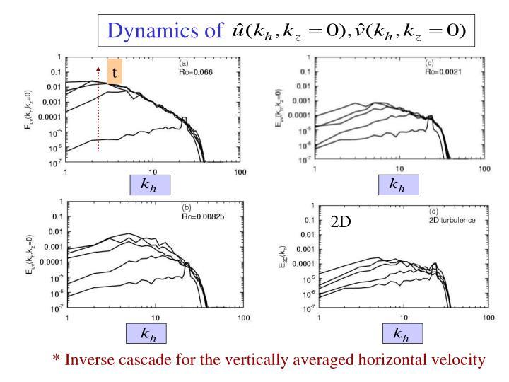 Dynamics of
