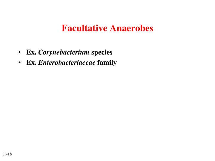Facultative Anaerobes