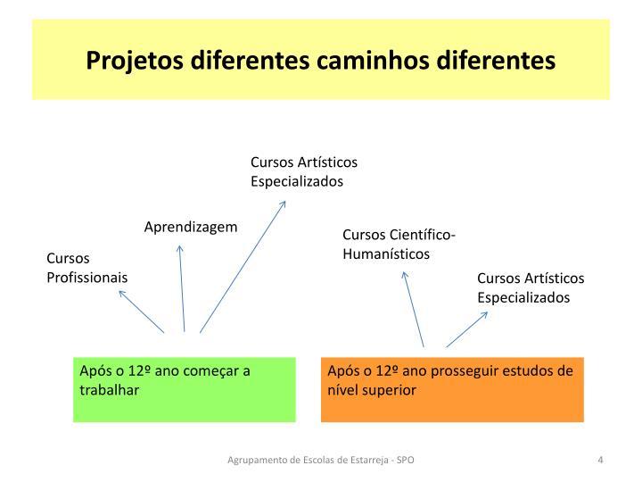 Projetos diferentes caminhos diferentes