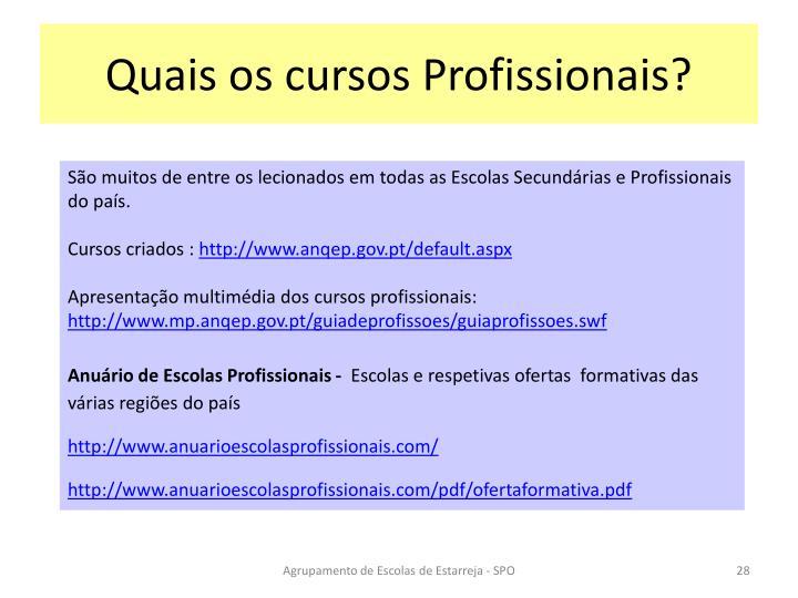 Quais os cursos Profissionais?