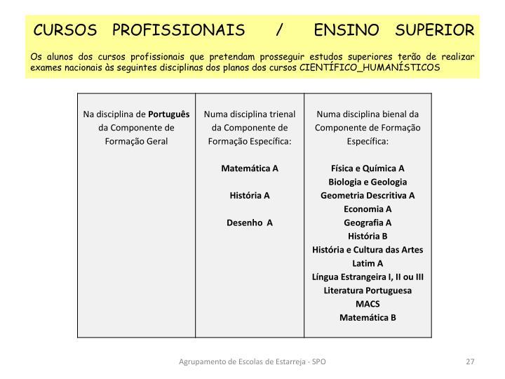 CURSOS PROFISSIONAIS  /  ENSINO SUPERIOR