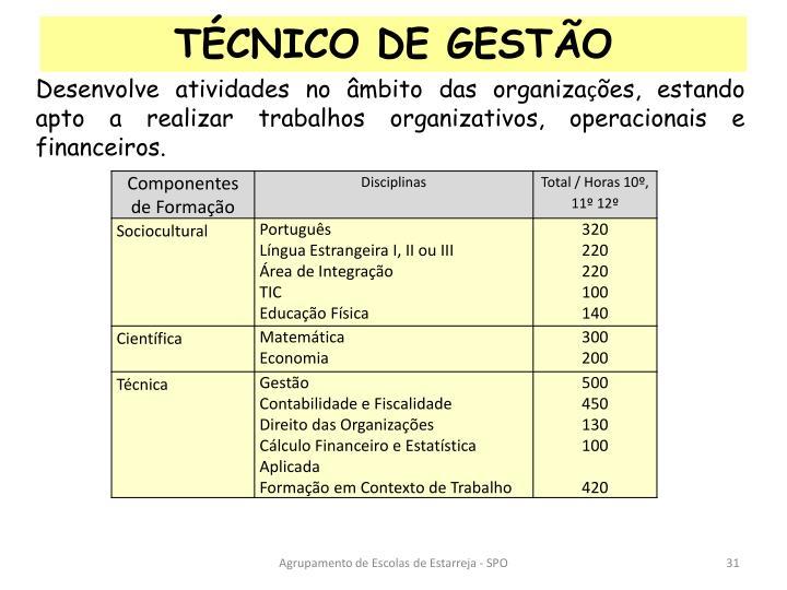 TÉCNICO DE GESTÃO
