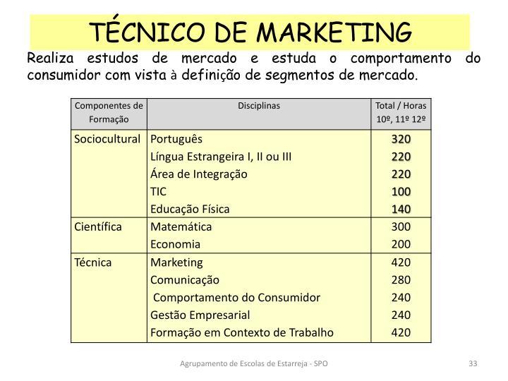 TÉCNICO DE MARKETING