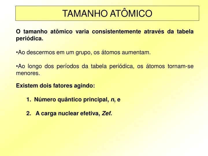 TAMANHO ATÔMICO