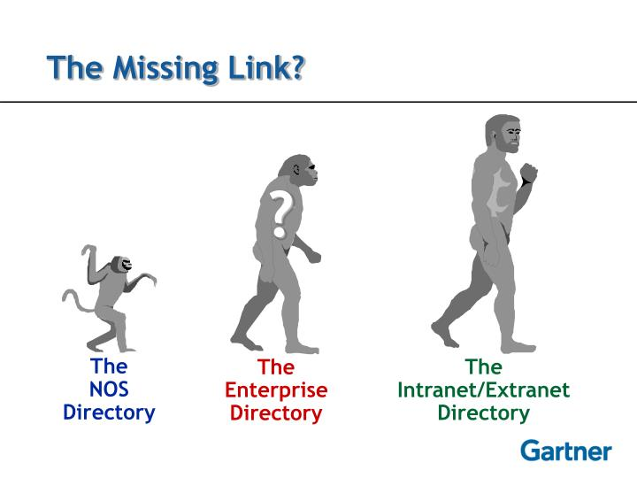 The Missing Link?
