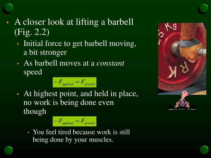 A closer look at lifting a barbell (Fig. 2.2)